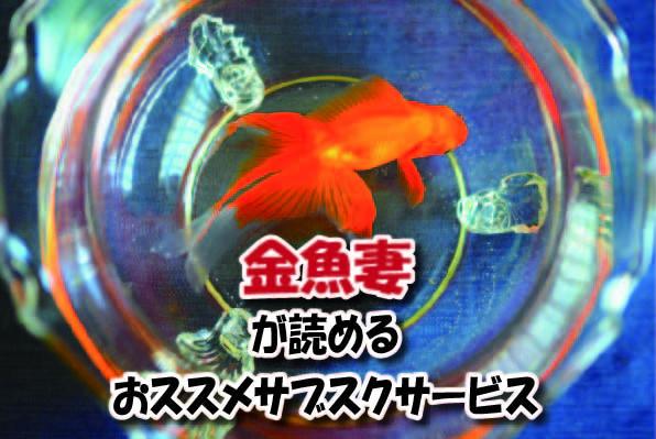 金魚妻のマンガサブスク