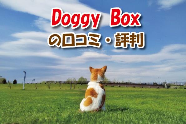 Doggy Box口コミ