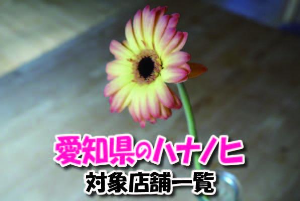 愛知県のハナノヒ対象店舗